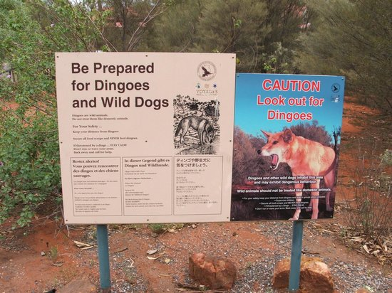 Kings Canyon Resort Campground : Campground sign