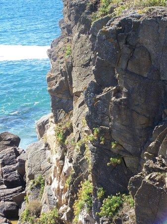 Ile d'Yeu : la plage
