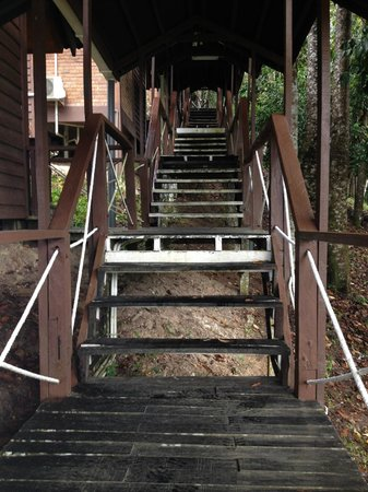 Myne Resort: Dreaded steps up to most rooms