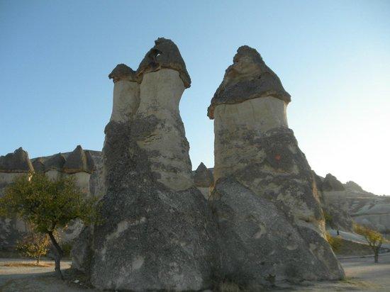 Pasabag: 3本のきのこ岩