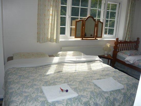 Da Vinci Manor Guest House : Bedroom