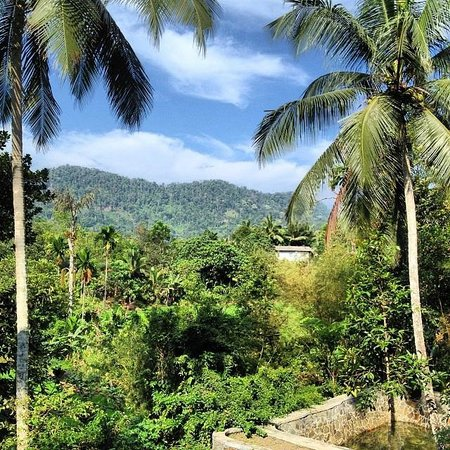Singharaja Garden ECO-Lodge : view from one of the villas