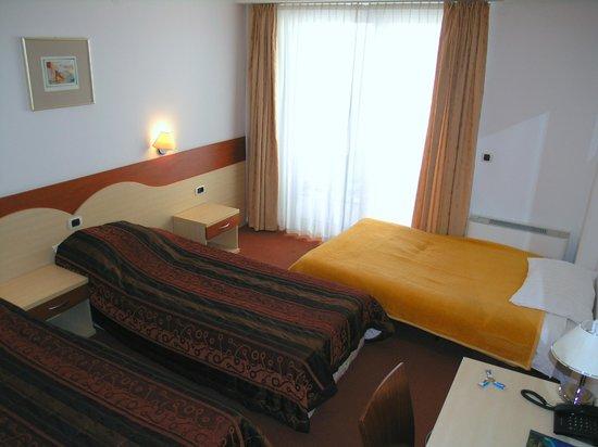 Hotel Krek: Triple room