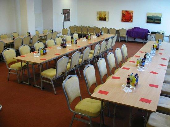 Hotel Krek: Conference room