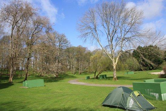Westport House Camping & Caravan Park : Lovely campsite