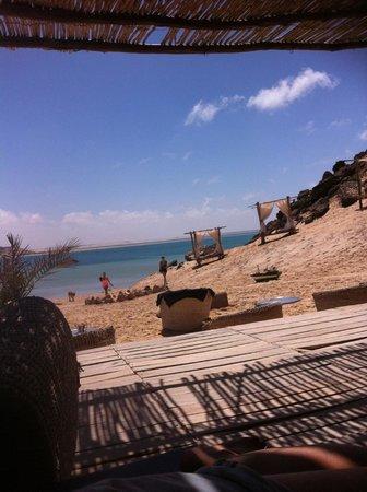 Dakhla Spirit Lagoon Camp : chilling
