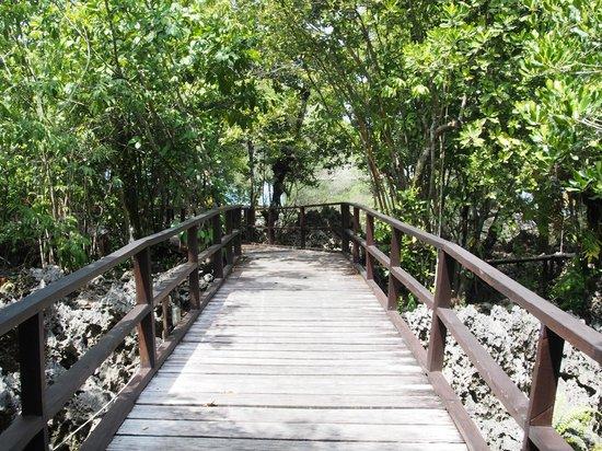 Nunukan Island Resort: Verbindung zwischen Speisesaal und Bungis