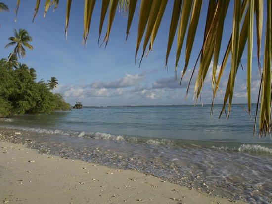 Nunukan Island Resort: Aussicht von der Insel
