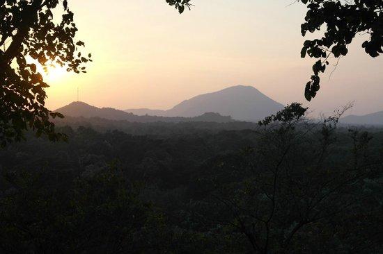 Dambale Resort: View