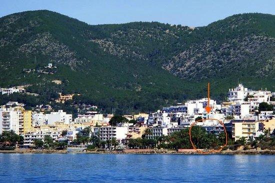 Hotel Playasol Maritimo : La zona di Figueretes vista dal mare (Il Maritimo è in parte nascosto dalla vegetazione)