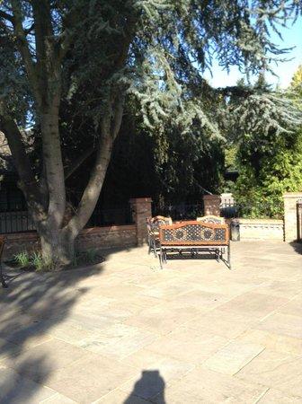 Ye Olde Plough House: TERRACE