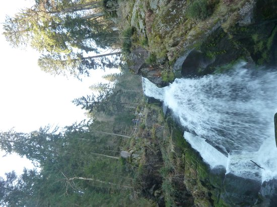 Black Forest Tours: Waterfall in Triberg
