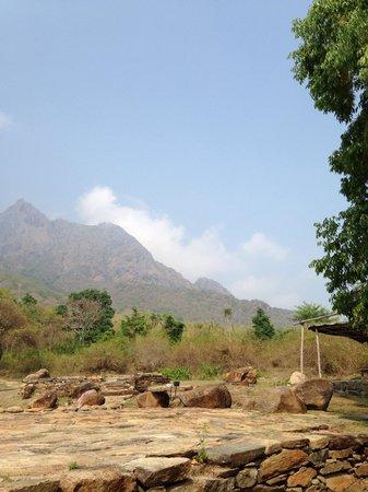 Jungle Retreat : The mountain view