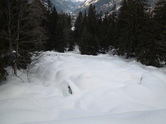 Castel Savoia: Giardino Botanico sommerso di neve
