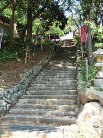 Taikoji Temple: 山門への階段