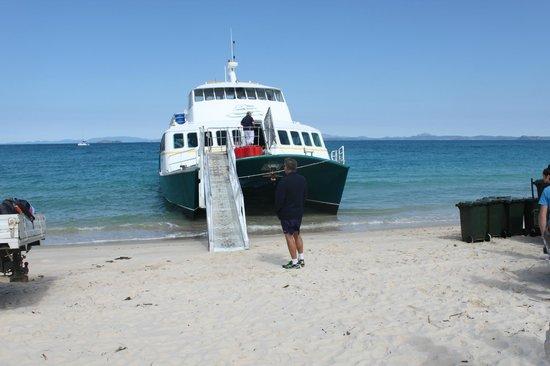 Keppel Haven: Ferry