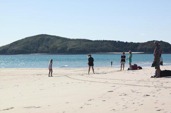 Keppel Haven: Sandy beaches