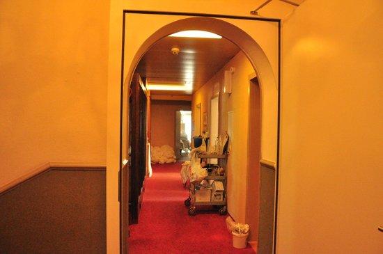 Harder Minerva Hotel : lobby