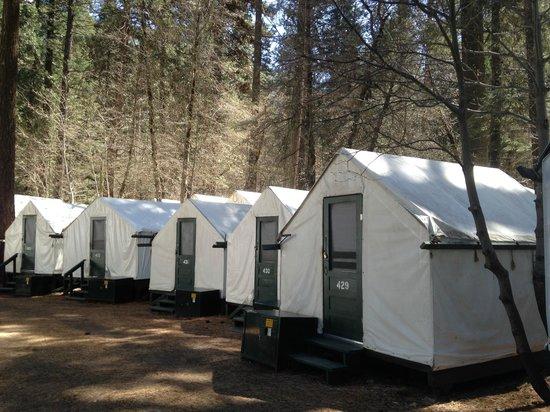Half Dome Village: Camping tents