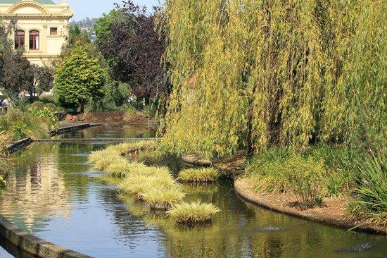Parque de la ciudad: Pond in the park