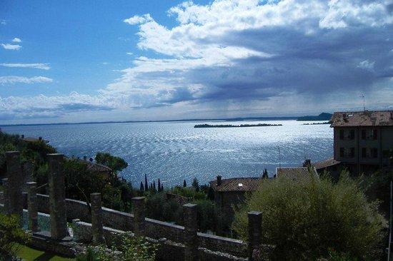 Albachiara B&B : Panorama dall'oliveto