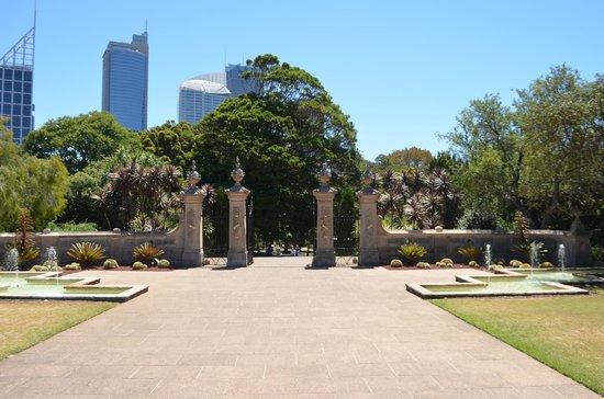 Royal Botanic Gardens (6)