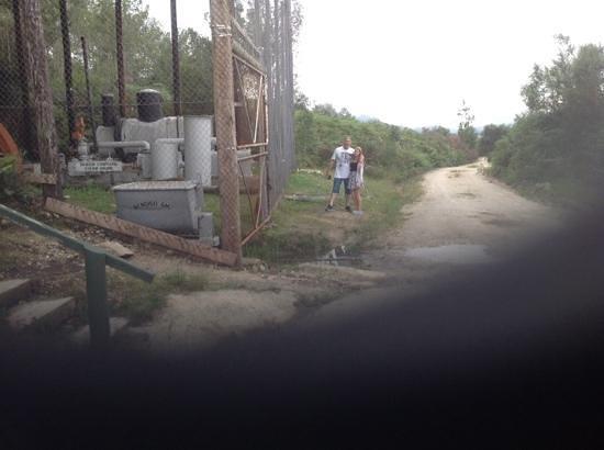 Millwood Goldmine Tours : bendigo mines