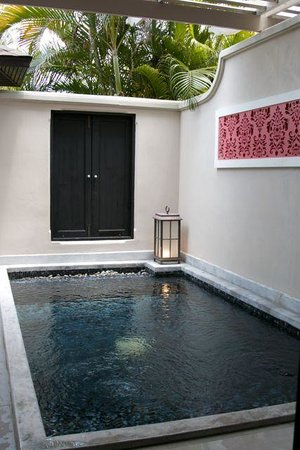 Centara Grand Beach Resort Samui : Plunge pool in our suite!