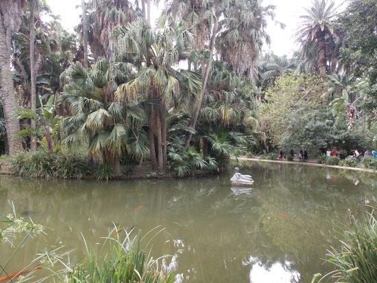 Le Jardin d'Essai du Hamma: Jardin d'essai EL Hamma