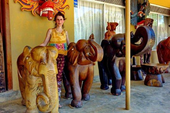 Antigua ciudad de Sigiriya: Вот такие слоны.