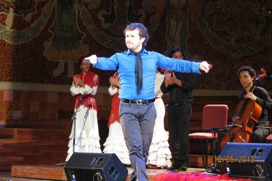 Palau de la Musica Orfeo Catala: Gran gala flamеncо