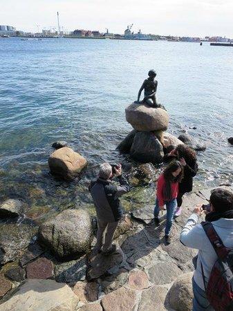 The Little Mermaid (Den Lille Havfrue): Little mermaid - visitors