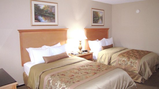 Best Western Motor Inn: Sleep the night away in our standard double guest room