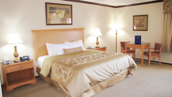 Best Western Motor Inn: You'll love our well-appointed King Room!