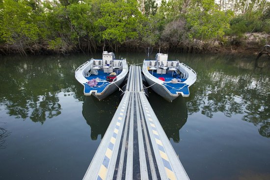 Johnson River Camp: The boats are ready for the days action