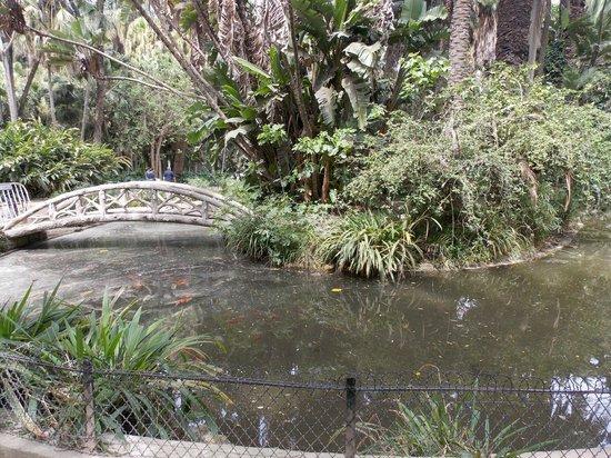 Le Jardin d'Essai du Hamma : Jardin d'essai EL Hamma