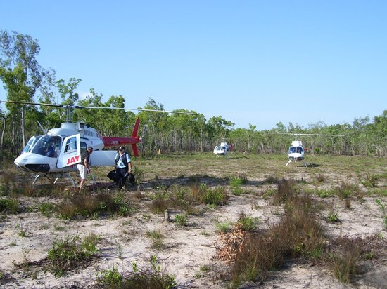 Johnson River Camp : Arrive by plane and a picturesque drive or a chopper straight to the camp