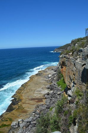 Manly Scenic Walkway (4)