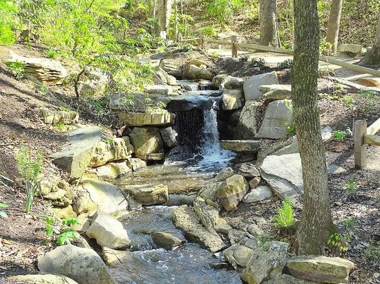 The Bog Garden at Benjamin Park: lower part of waterfall