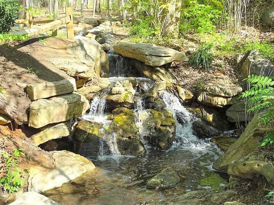 The Bog Garden at Benjamin Park: upper waterfall