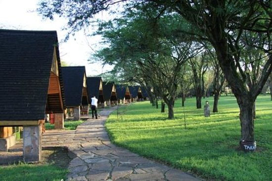Keekorok Lodge-Sun Africa Hotels: Chalets along the lodge exit road