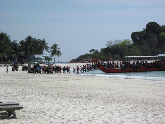 Laguna Redang Island Resort: Lo sbarco dei turisti cinesi sulla spiaggia
