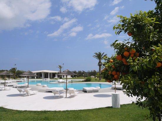 Hotel Borgo Pantano : superbe piscine , bien entretue