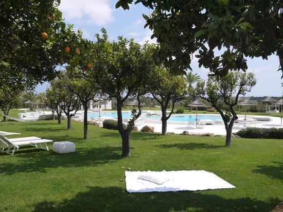 Hotel Borgo Pantano : vue sur le jardin et en fond la piscine