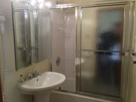 Dewitt Hotel & Suites : Bathroom