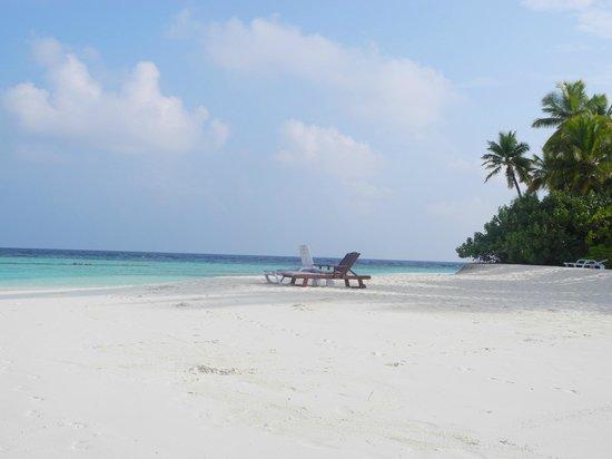 Angaga Island Resort & Spa: SPIAGGIA
