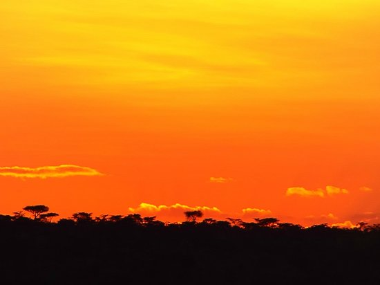 Eagle View, Mara Naboisho : Sunset on the Mara