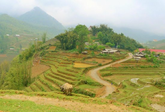 Footprint Vietnam Travel Day Tours: sapa trek
