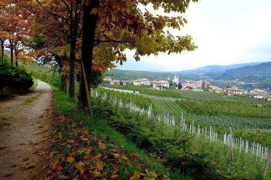 Agritur Le Pergolette: Autumn strolling