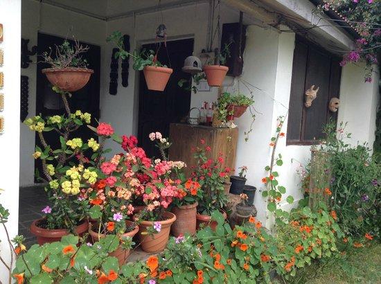 Darang Tea Estate: A cottage